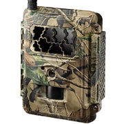 Burrel Edge HD+4G trail camera